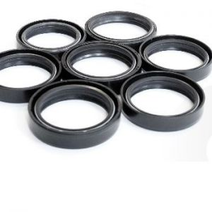 Oil Seals for front forks